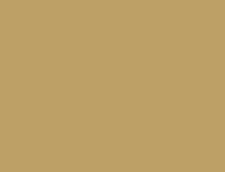 クロノスタシス